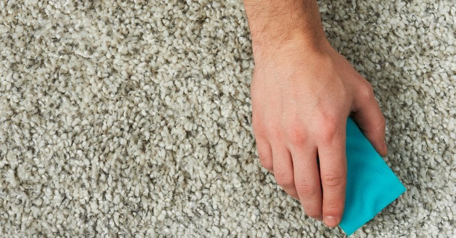 Two Reasons To Have Your Carpet Cleaned Every 6-12 Months